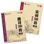 唐诗 宋词 国学钢笔楷书字帖(套装共2册)