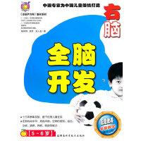 全脑开发.右脑.中国专家为中国儿童打造(5-6岁)配赠教具专家教学精华介绍