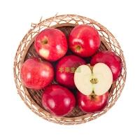【本来生活】新西兰红玫瑰苹果8粒装