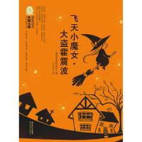 外国儿童文学经典100部:飞天小魔女・大盗霍震波 (德国)普罗伊斯拉 ,王石安 9787535159465