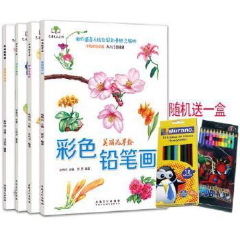 4册彩色铅笔画送12色彩铅 花草水果美食动物手绘画彩铅画入门教程书
