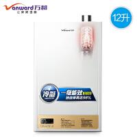 【当当自营】万和(Vanward)JSLQ20-12EV20燃气热水器