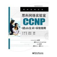 思科网络实验室CP(路由技术)实验指南 梁广民 9787121160714