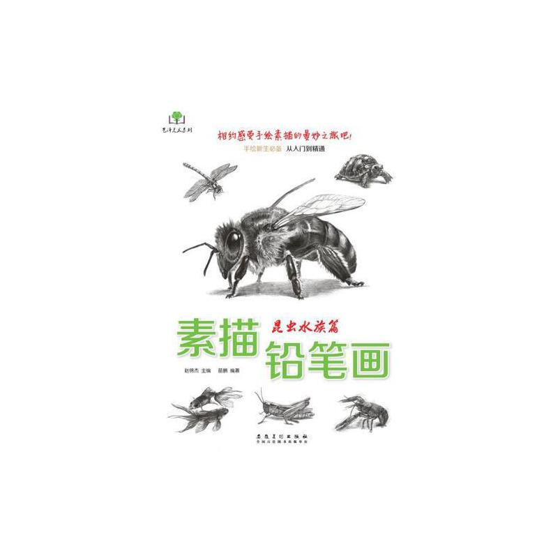 素描铅笔画昆虫水族篇画蚂蚁蜜蜂金鱼等画法手绘新生必备从入门到精通