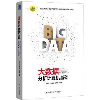 大数据分析计算机基础(大数据分析统计应用丛书)