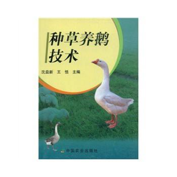 种草养鹅技术