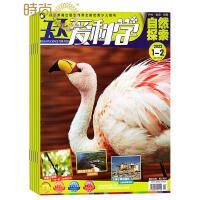 天天爱科学 少儿阅读期刊2017年全年杂志订阅新刊预订1年共12期10月起订