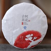 才者 古树茶花普洱茶饼189克 云南七子饼茶叶生茶饼勐海