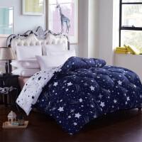 保暖春秋冬被加厚棉被子单人双人学生宿舍床太空被芯