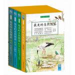 最美的自然图鉴(共4册)