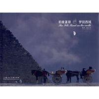 耶里夏丽:梦回西域 陈卫中;杨剑 9787532271689 上海人民美术出版社