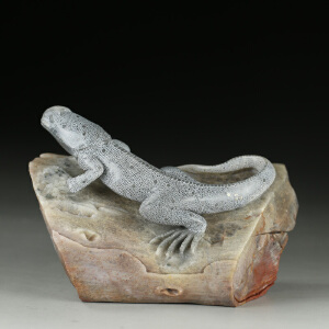 寿山巧色老性高山石  精雕蜥蜴特色摆件  jd2296
