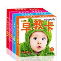(早教卡)全4本 0-3岁宝宝必备早教卡片 婴幼儿识字图片儿童启蒙书籍 撕不烂全脑开发益智读物 蔬菜水果认物人物1-2岁EQCQ认知卡小笨熊