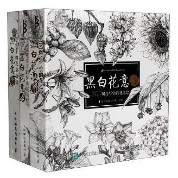 《正版黑白花意3 4 5新版花之绘手绘本铅笔画入门教材