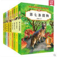 沈石溪动物小说品藏书系 全套9册 系列的书 太阳鸟和眼镜王蛇 第七条猎狗正版包邮 6-7-8-10-12岁儿童文学书籍图书