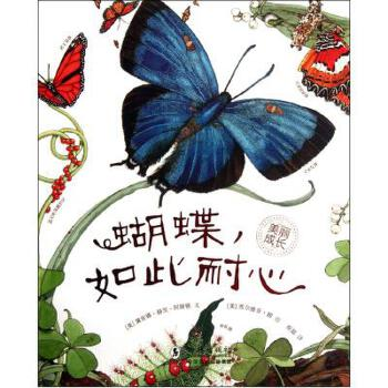 少儿国画蝴蝶画法步骤