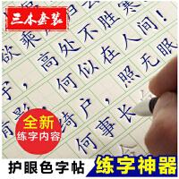 【19天练好字】楷书 成人初高中学生练字板套装凹槽特效写字板钢笔练字帖好字