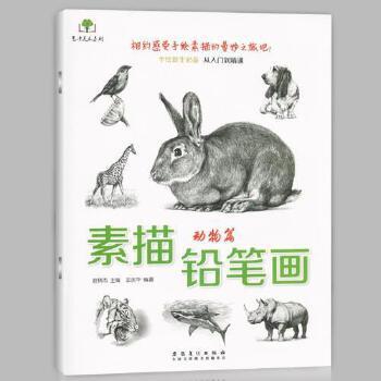 现货素描铅笔画动物篇画马虎狮子兔猪等画法手绘新生必备从入门到精通
