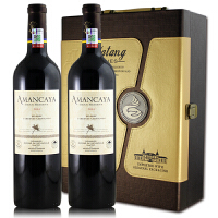 阿曼卡亚红酒 阿根廷原瓶进口 拉菲安第斯干红葡萄酒礼盒装 750ml*2