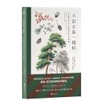 不如去看一棵树:26棵平凡之树的非凡故事(德国亚马逊五星科普力作,讲述26棵常见之树背后的故事。探秘人与树的文化关联,