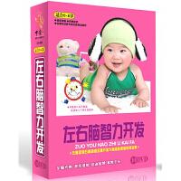 左右脑智力开发 10DVD 精装版 儿童启蒙 卡通动画 适合0-6岁