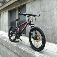 【618年中促】耐嘛20寸自行车21速双碟刹禧玛诺变速儿童学生山地车
